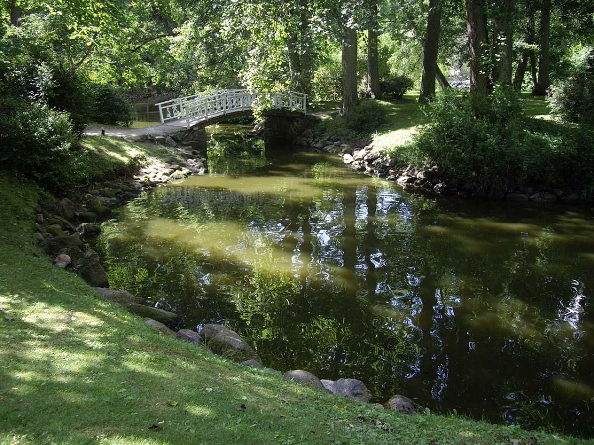 пруд с мостиком в ботсаду Паланги