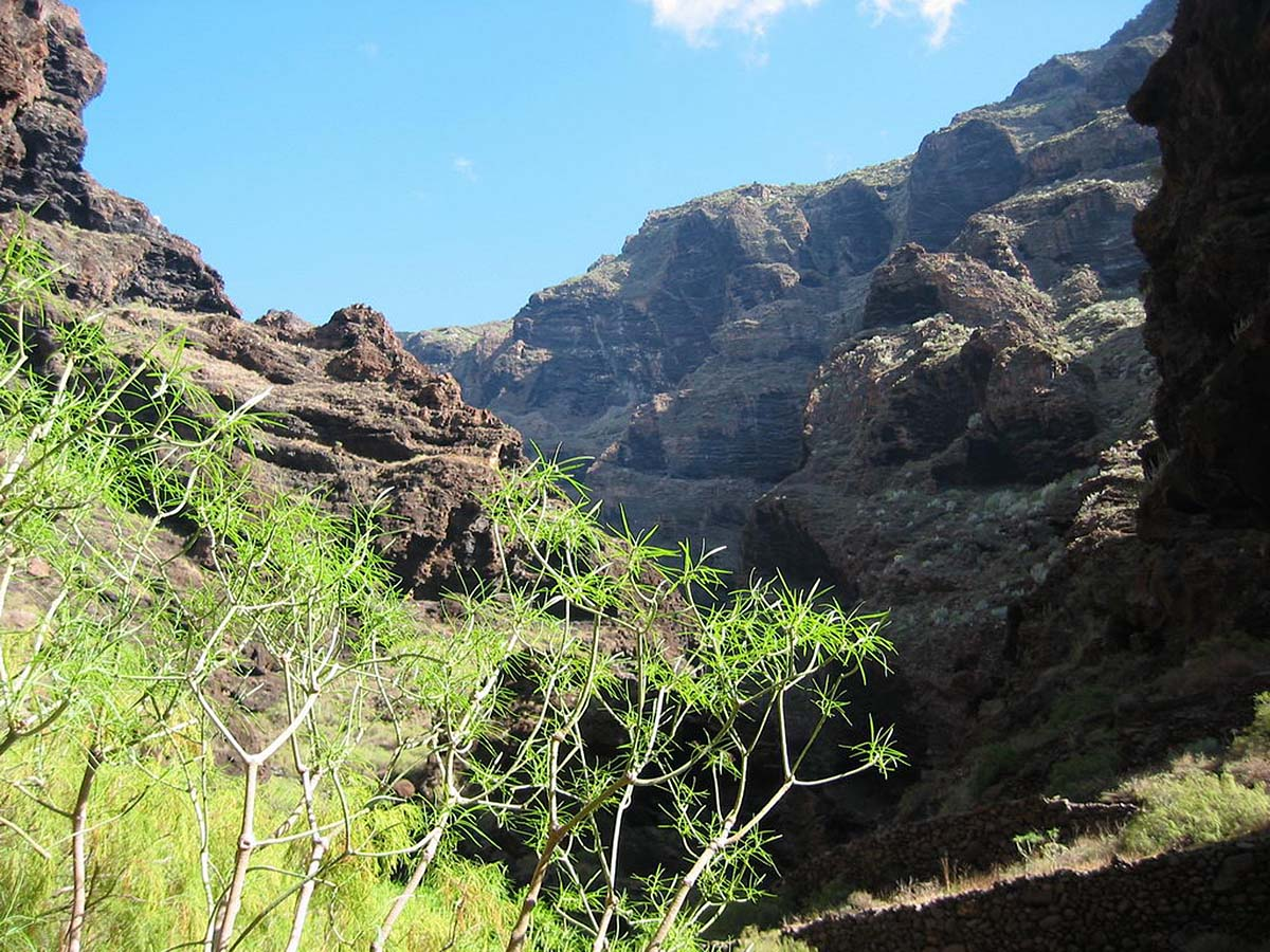 ущелье Маска, Тенерифе, Испания