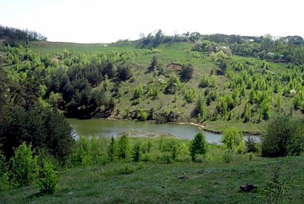 Парасоцкий лес, Полтавская область