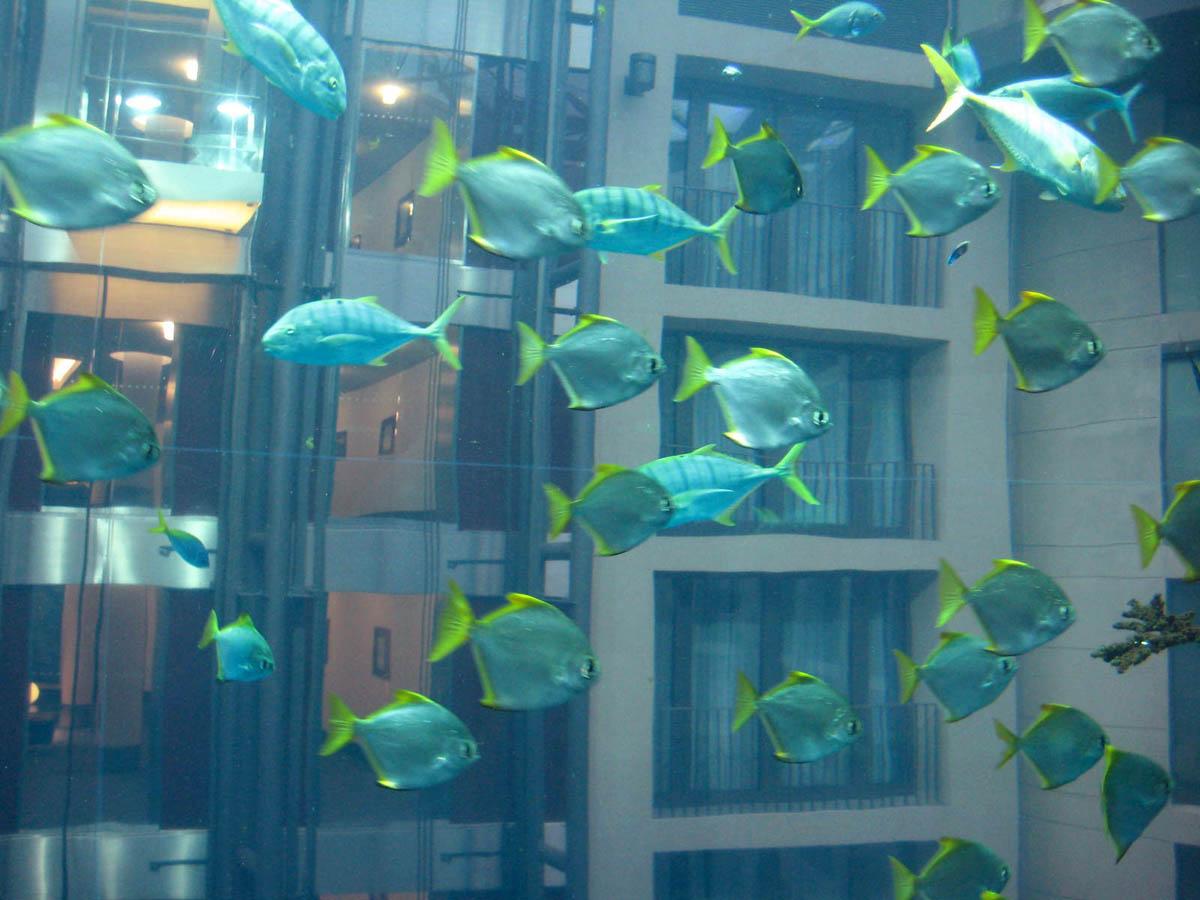 аквариум АкваДом в Берлине