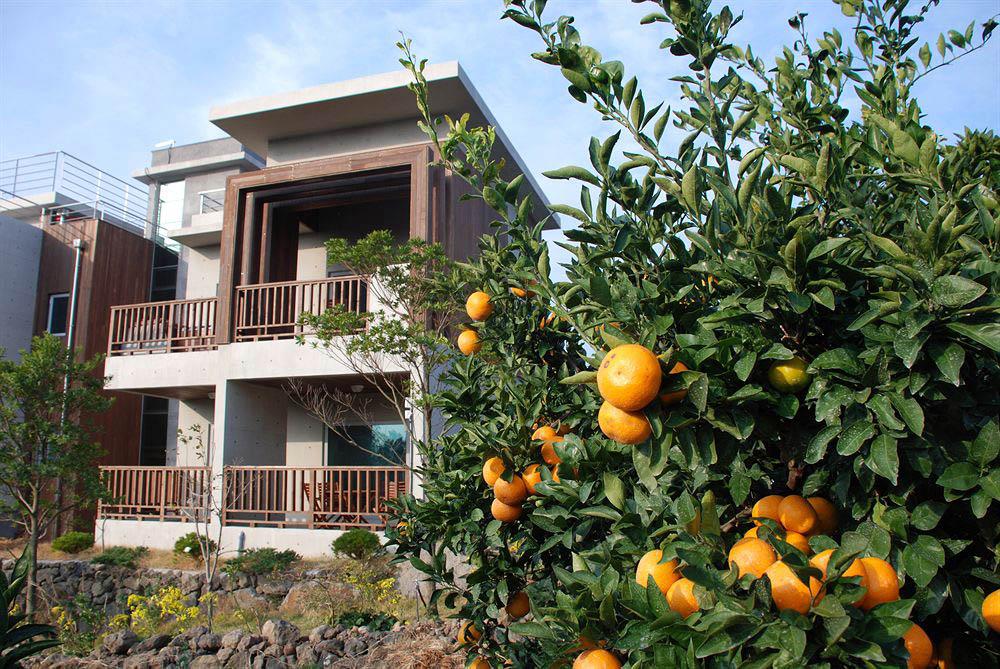 эко-гостиница Jejueco Suites