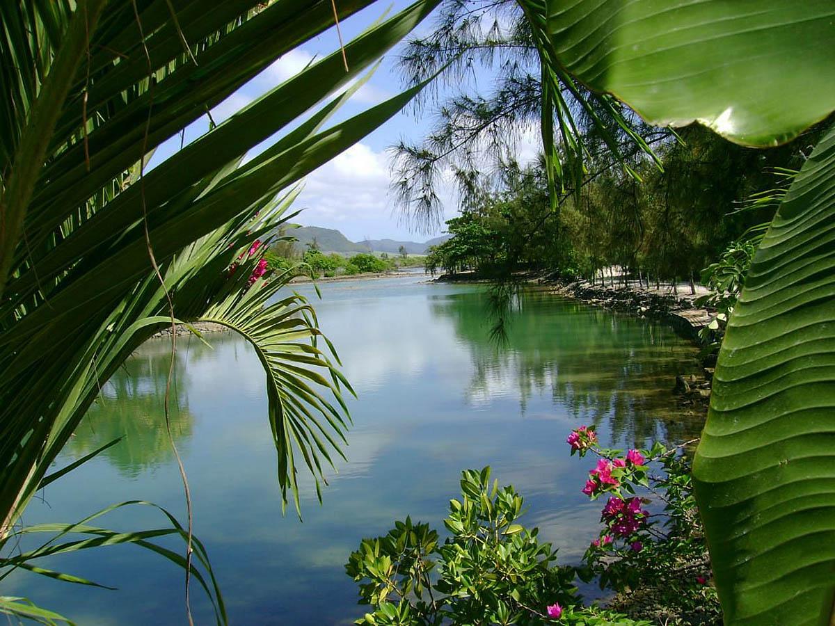 эко-отель Люкс Ле Морне, Маврикий