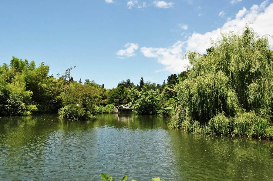 парк Южные Культуры в Адлере