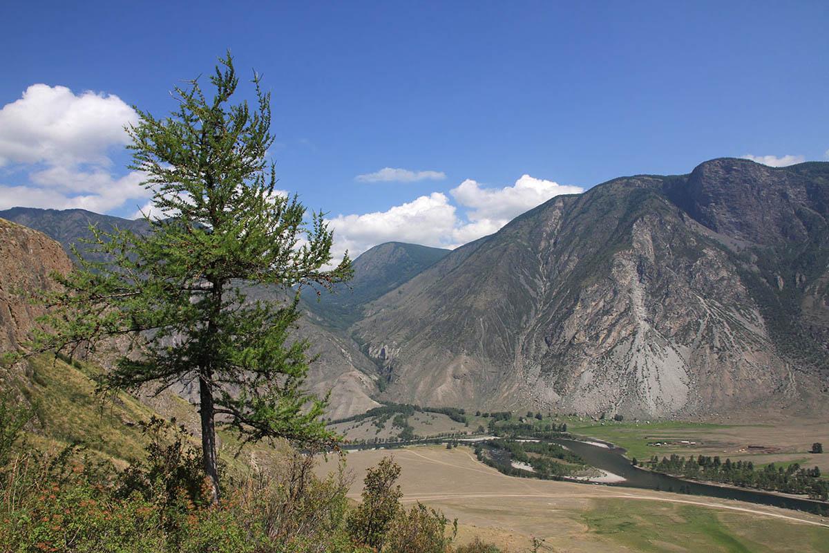 река Чулышман, урочище Ак-Курум, Алтай