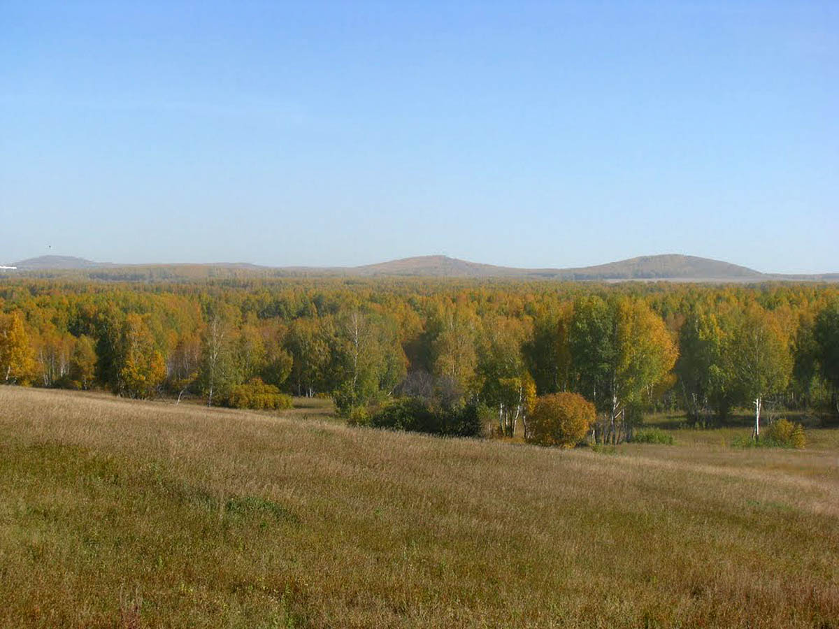 Буготакские сопки, п. Горный, Тогучинский район, Новосибирская область