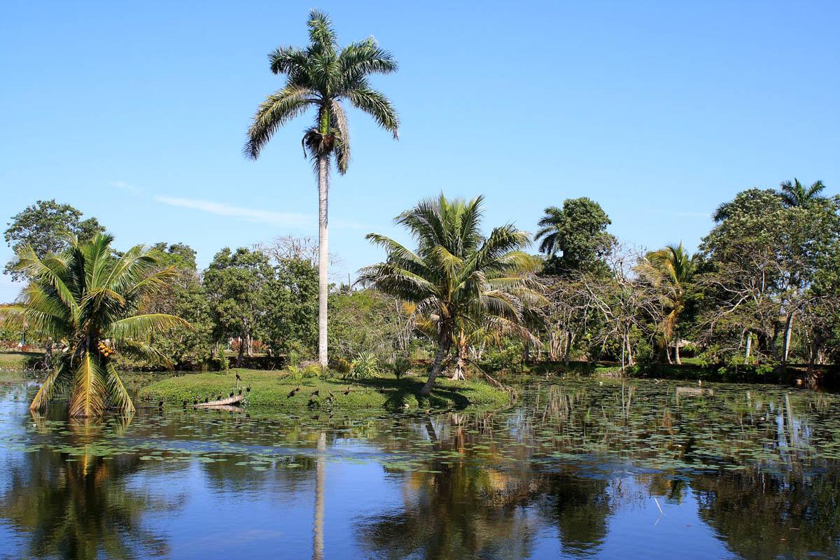 Parque Nacional Ci?naga de Zapata