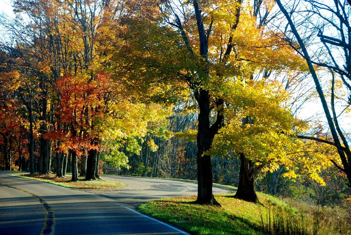 Skyline road, Shenandoah