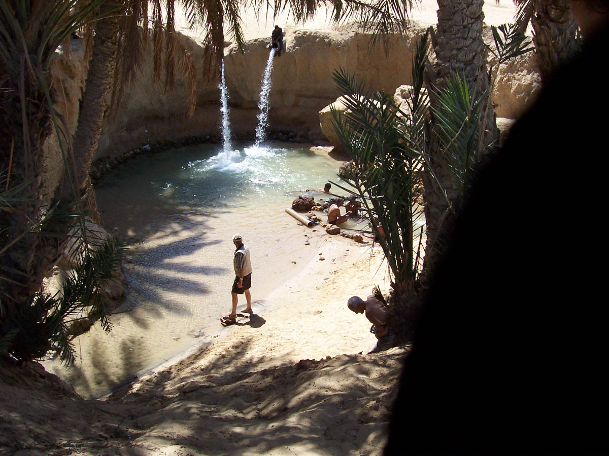 Tozeur Oasis, Tunisia
