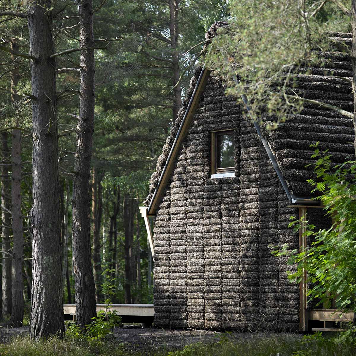 эко-дом из водорослей, Дания