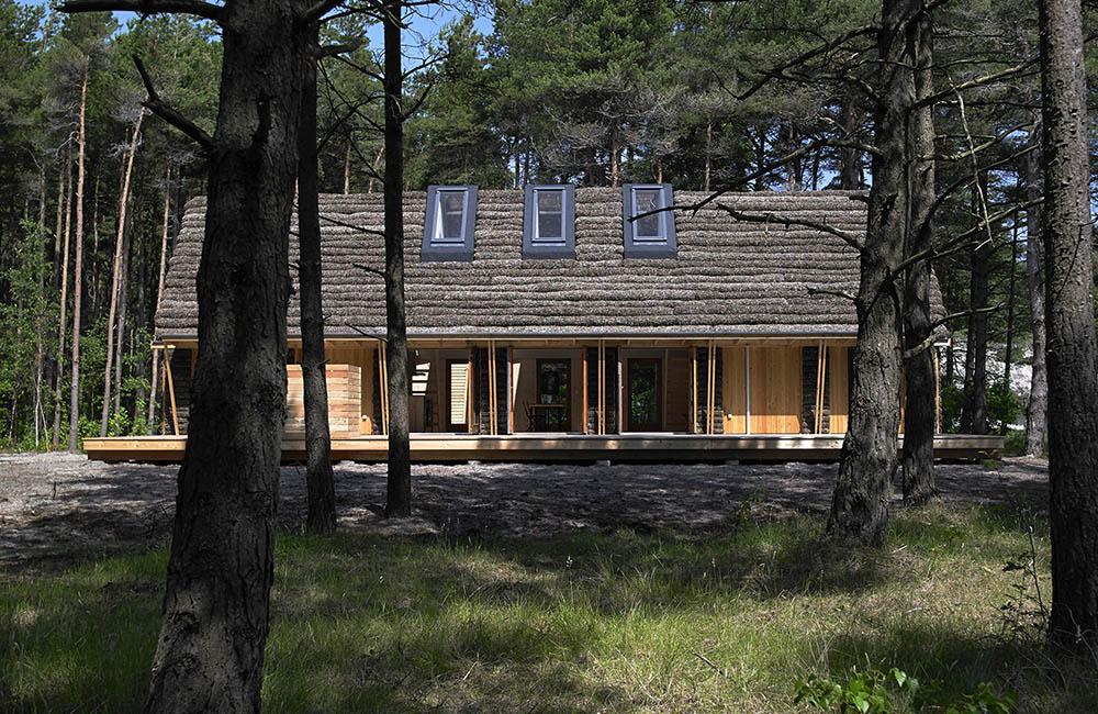 эко-дом из водорослей в Дании