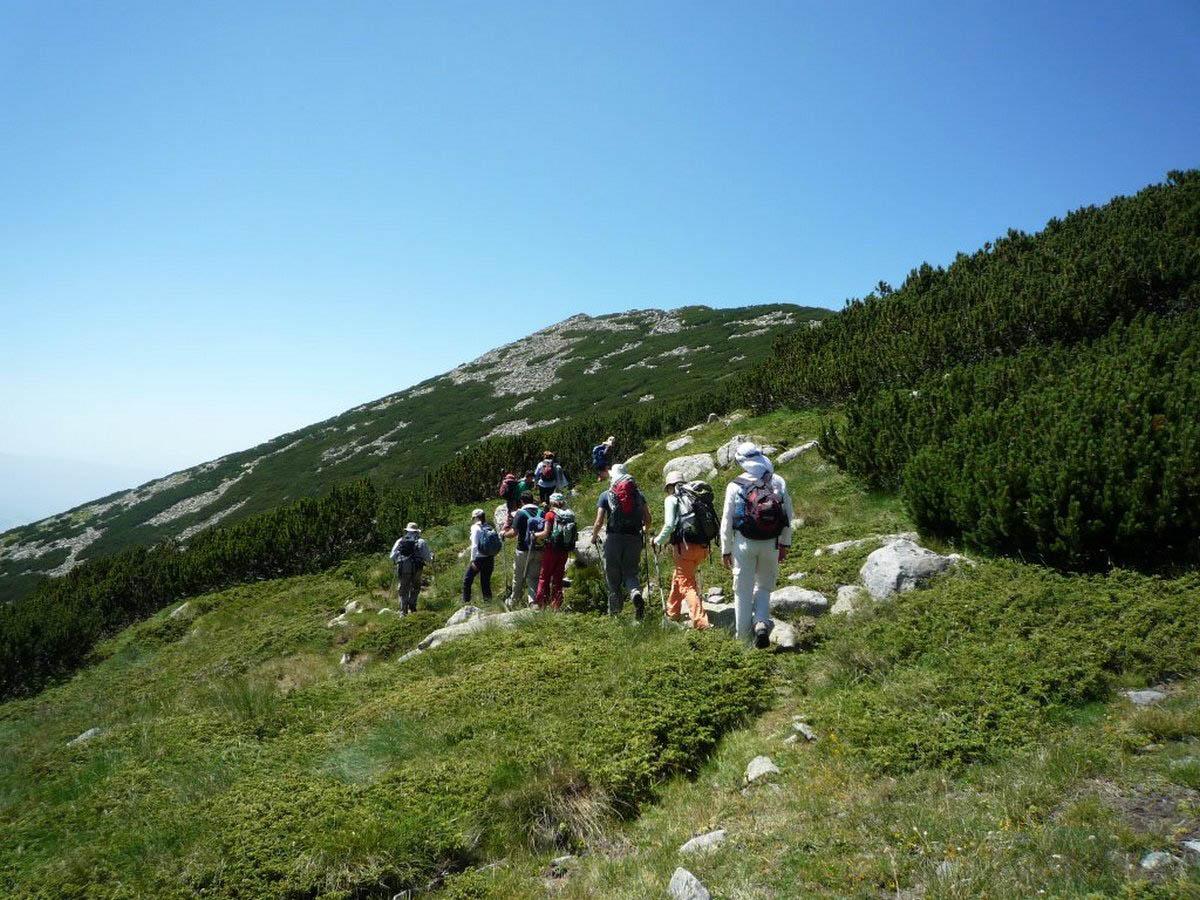 горная цепь Рила в Болгарии