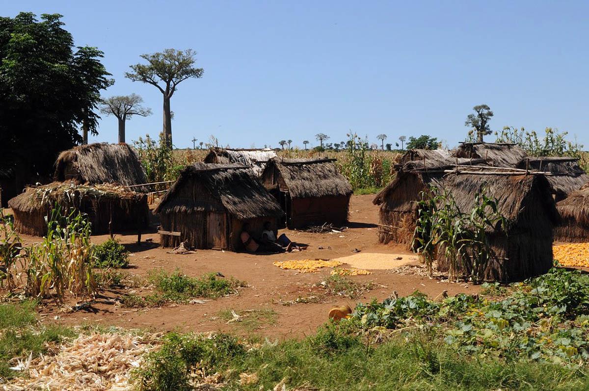 хижины малагасийцев