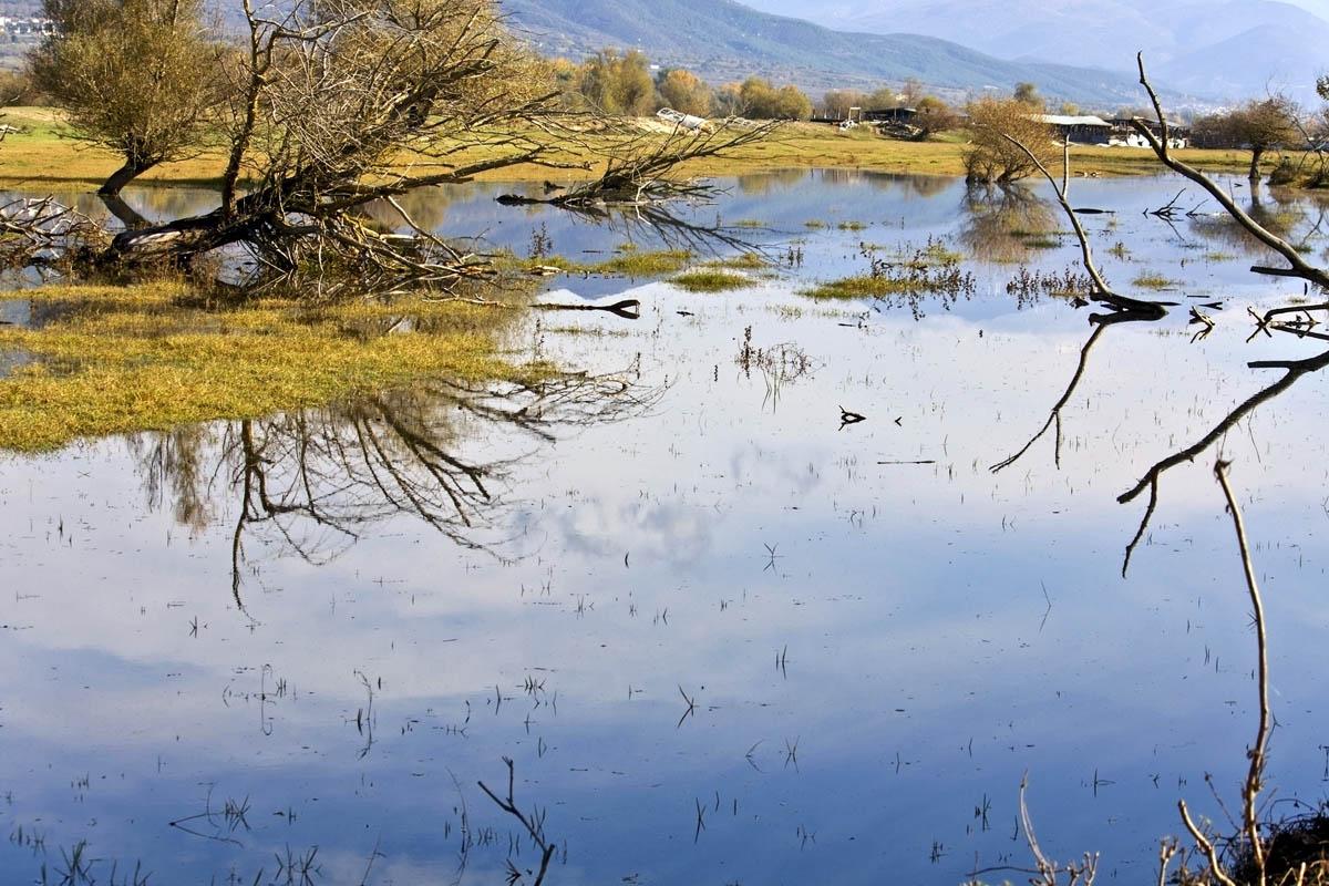 reserve Kerkini in Greece