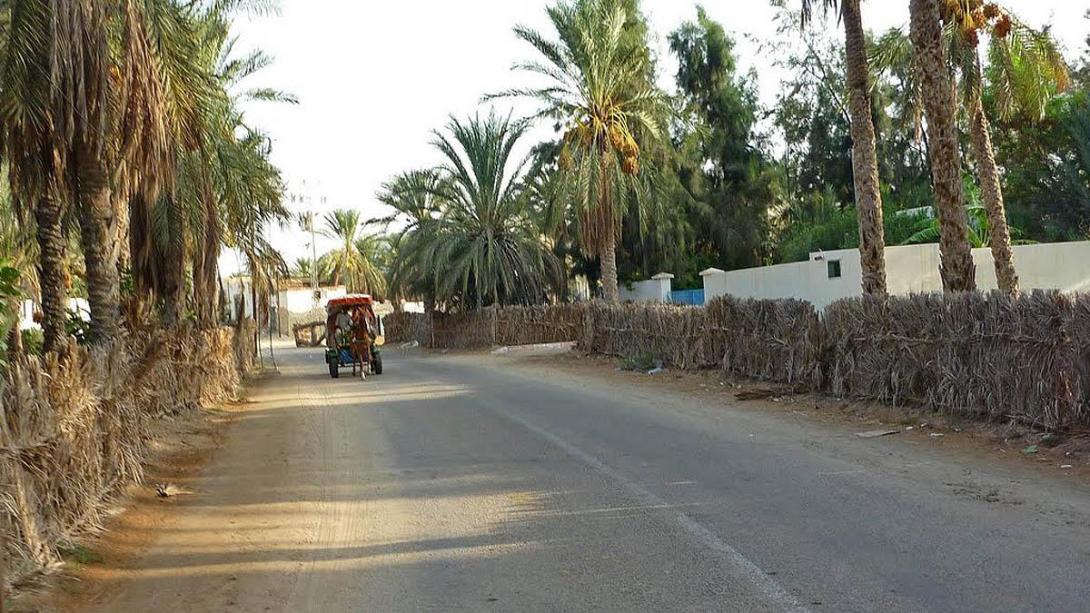 улицы Тозера