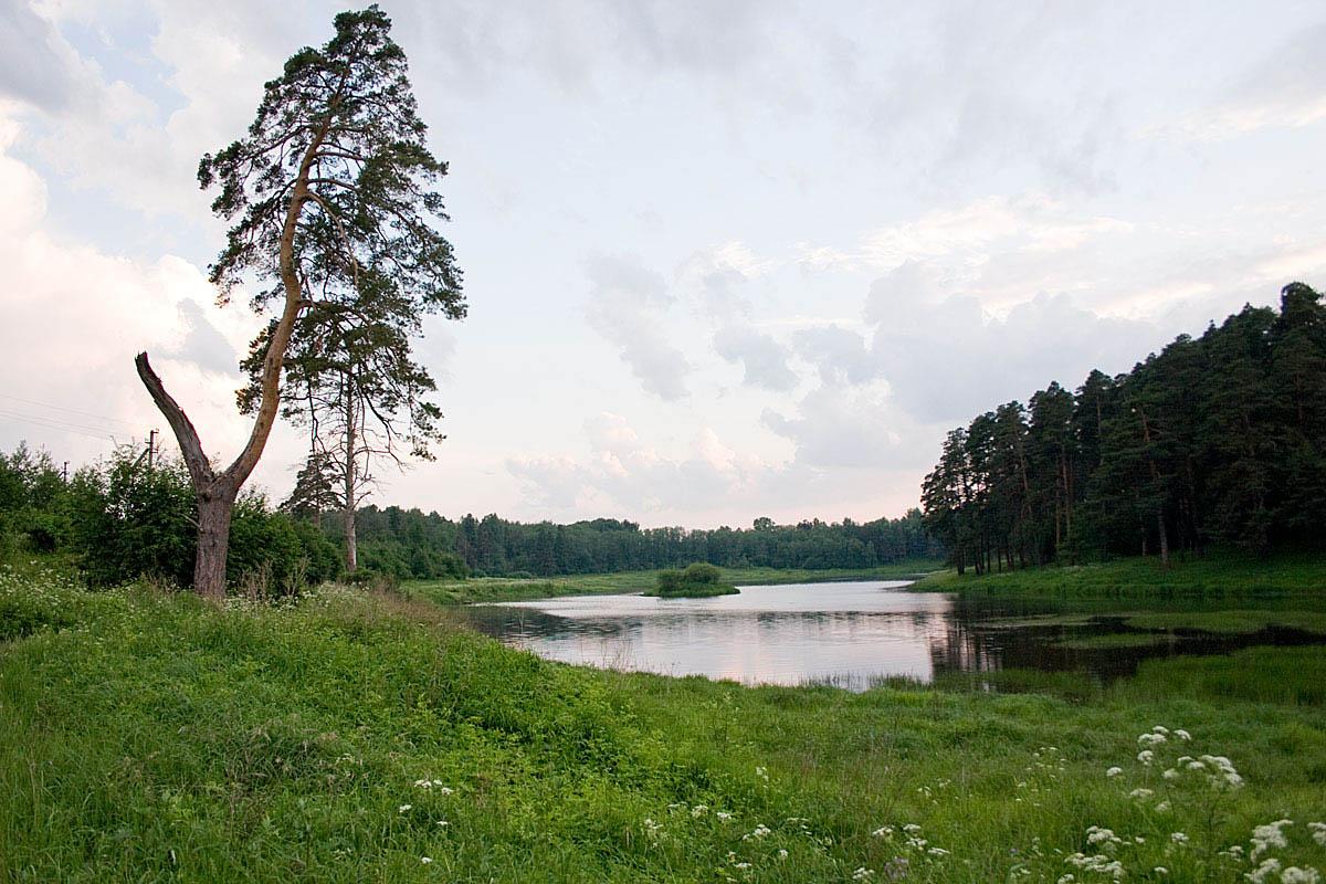 усадьба Щелыково в Костроме