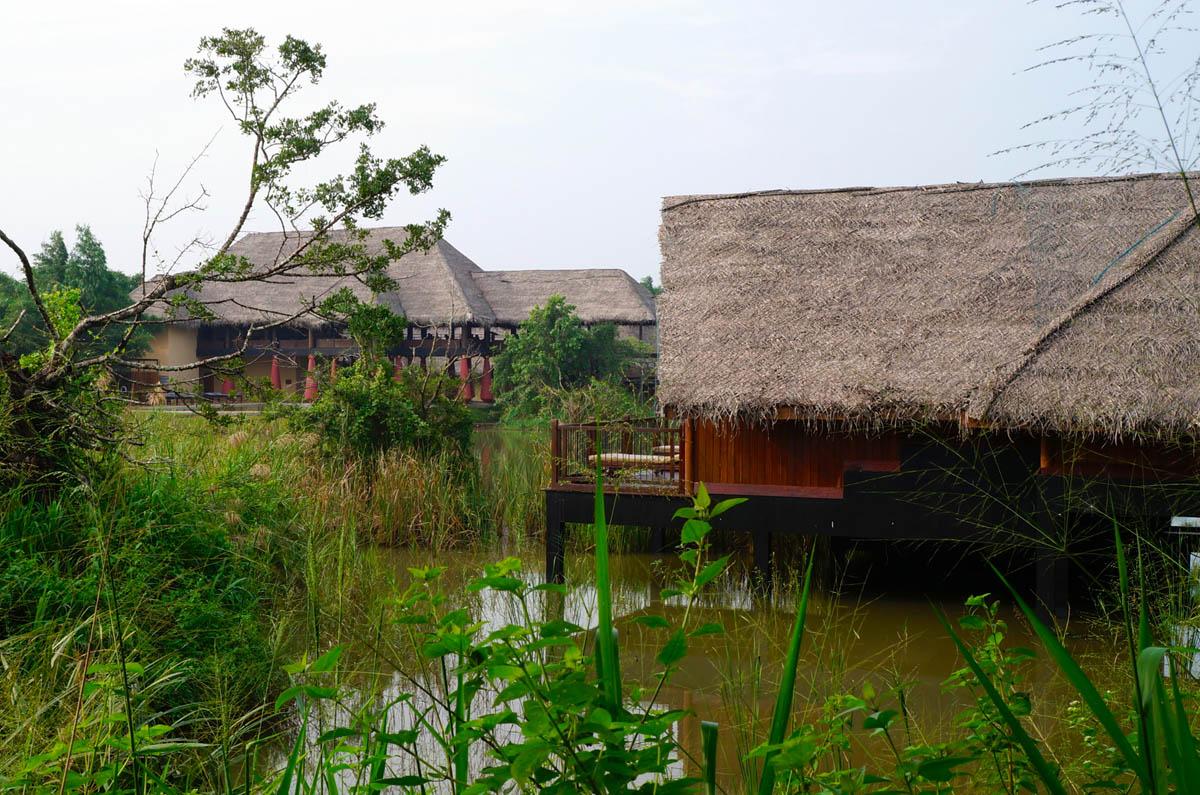водно-болотные угодья эко-курорта Jetwing