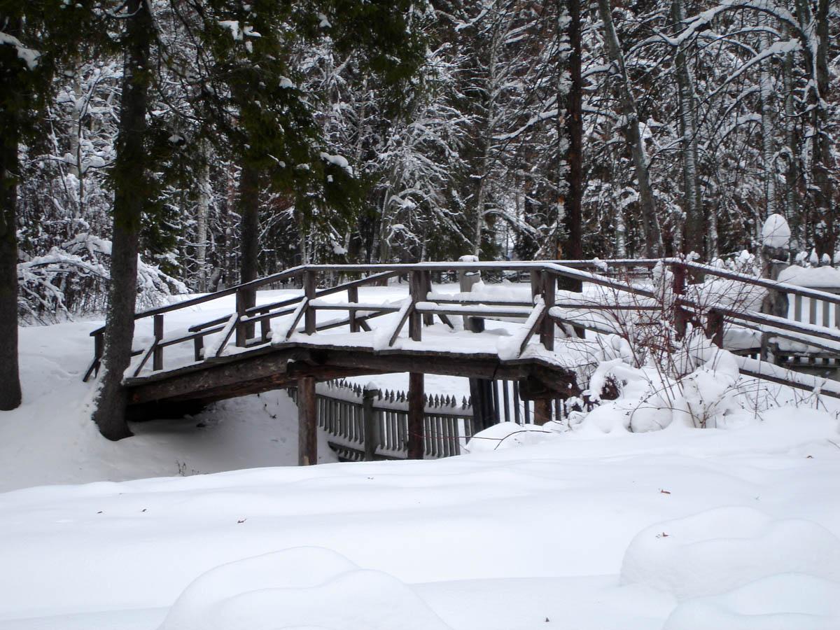 зима в Щелыково