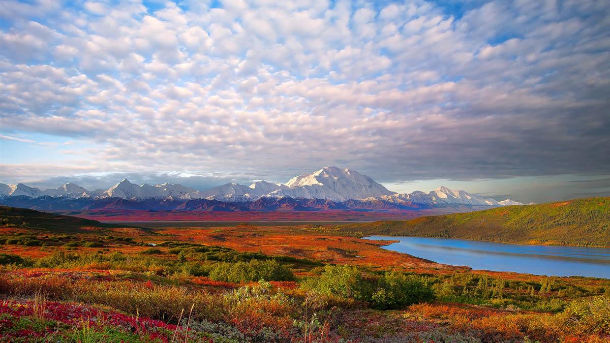 Denali National Park, USA