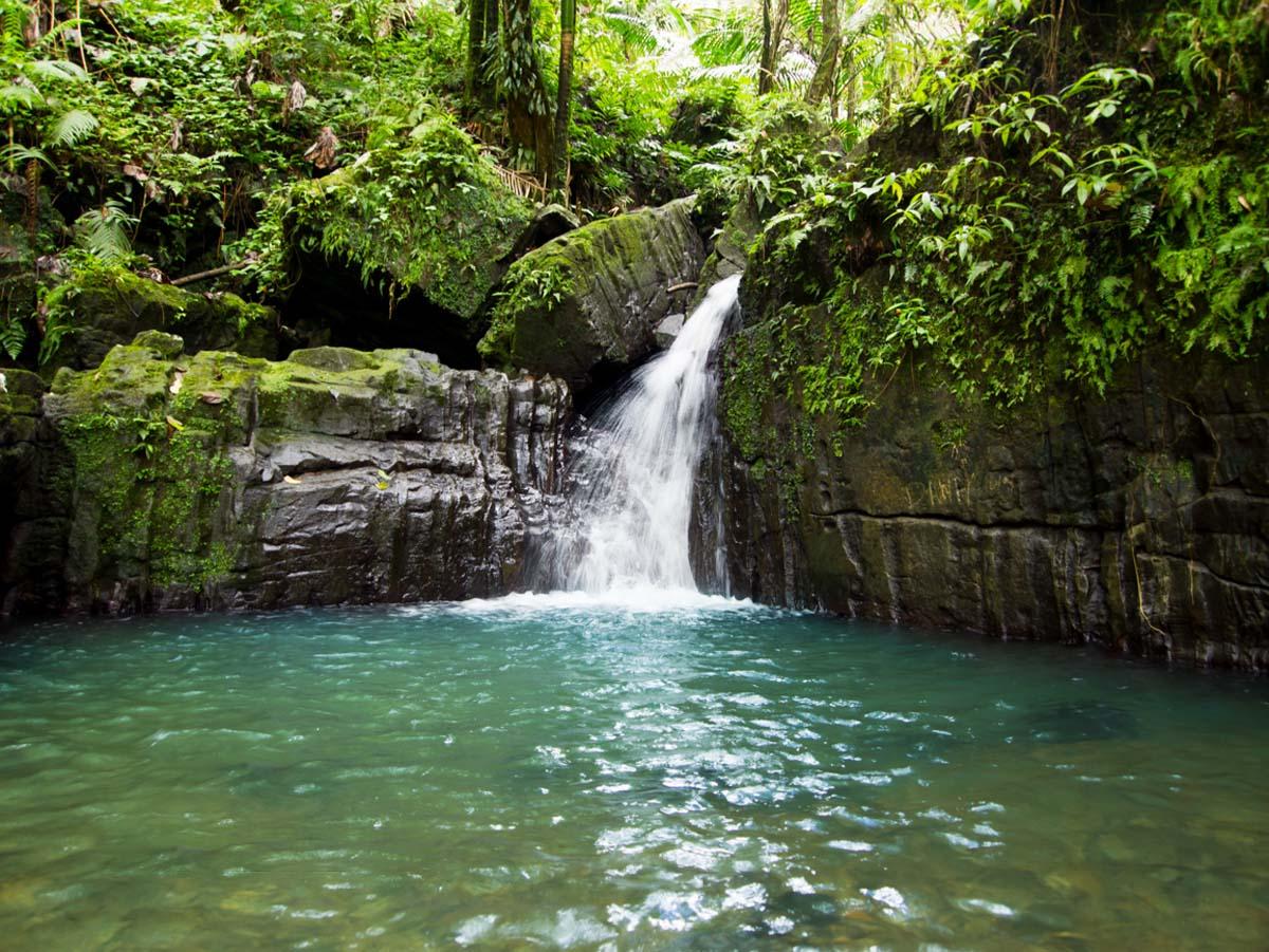 Diego Creek waterfall, El Yunque, Puerto Rico