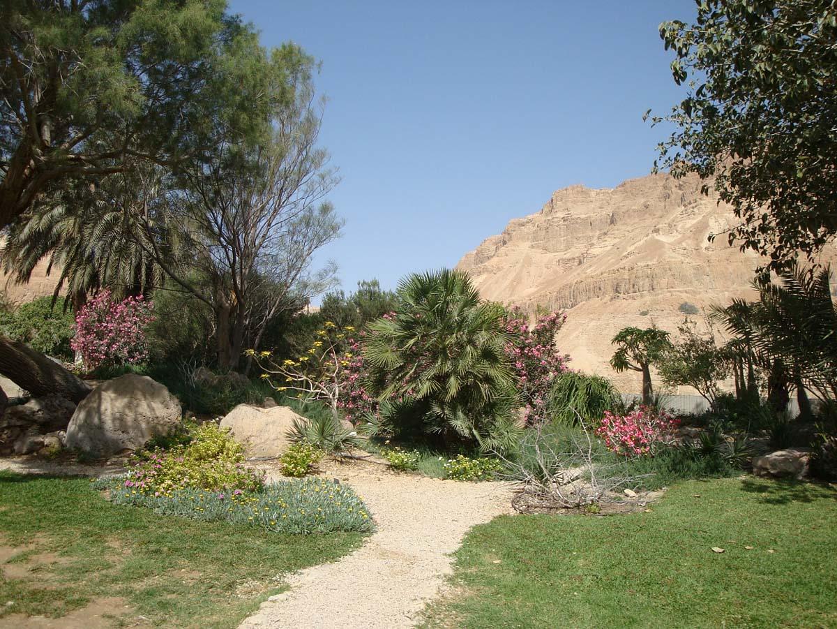 Эйн-Бокек, Израиль