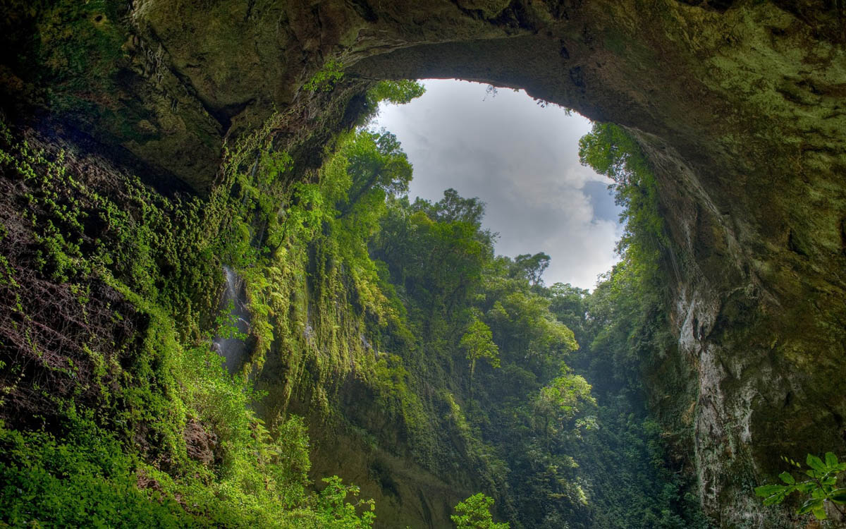 El Yunque tropical rainforest, Puerto Rico