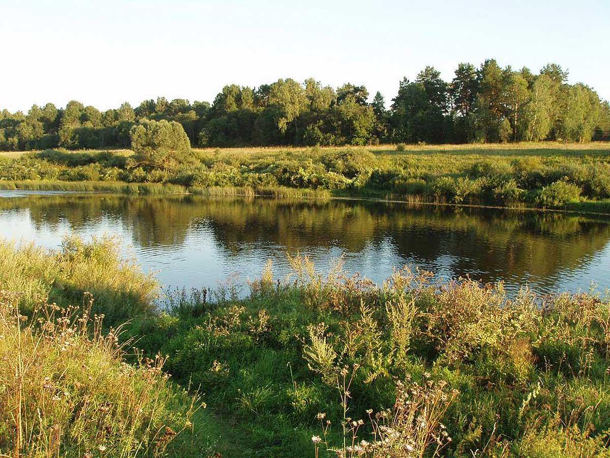 Национальный парк Угра, Калужская область, Россия