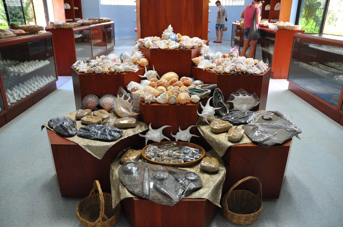 музей раковин на Пхукете