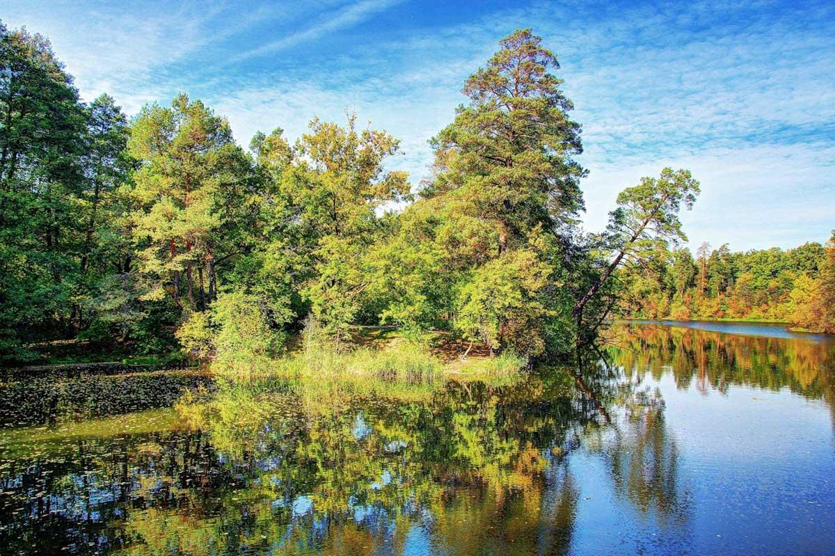 озеро Горащиха, Пуща-Водица, Киев