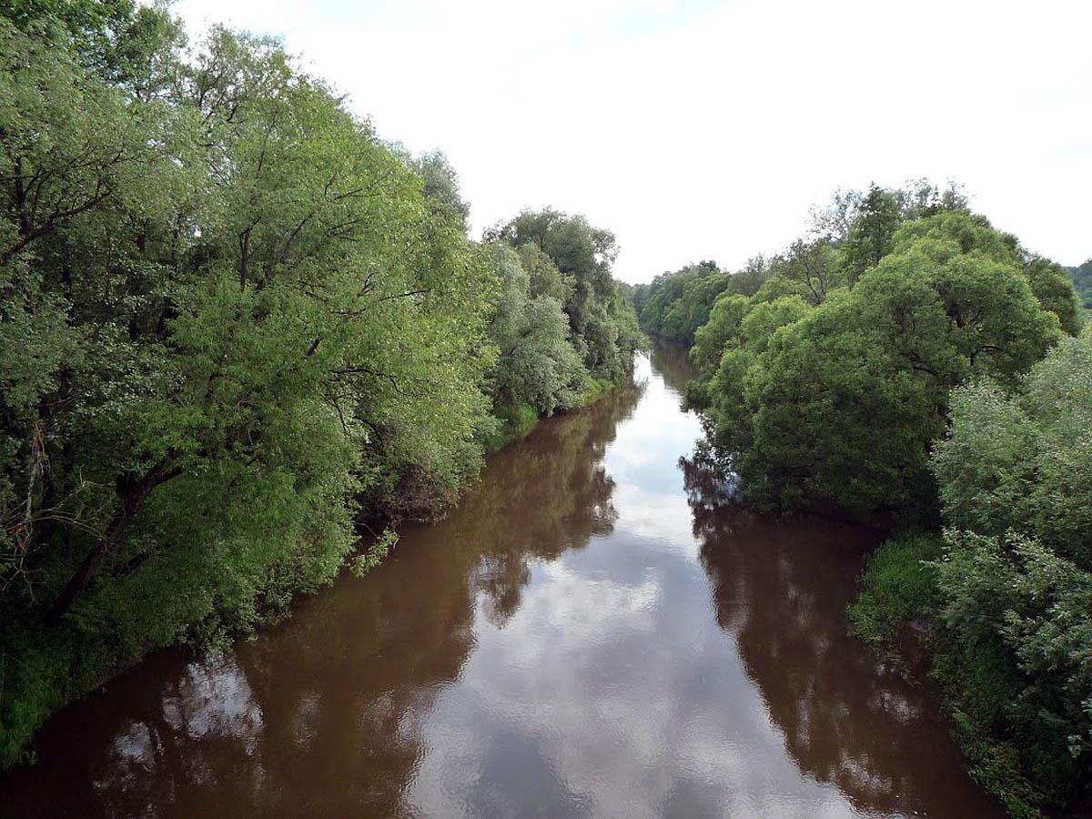 река Вытебеть, Козельские засеки