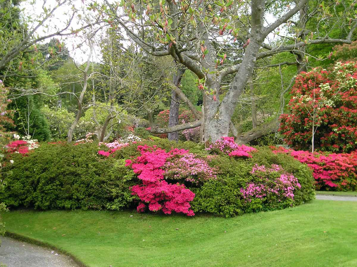 сад Боднант, Уэльс