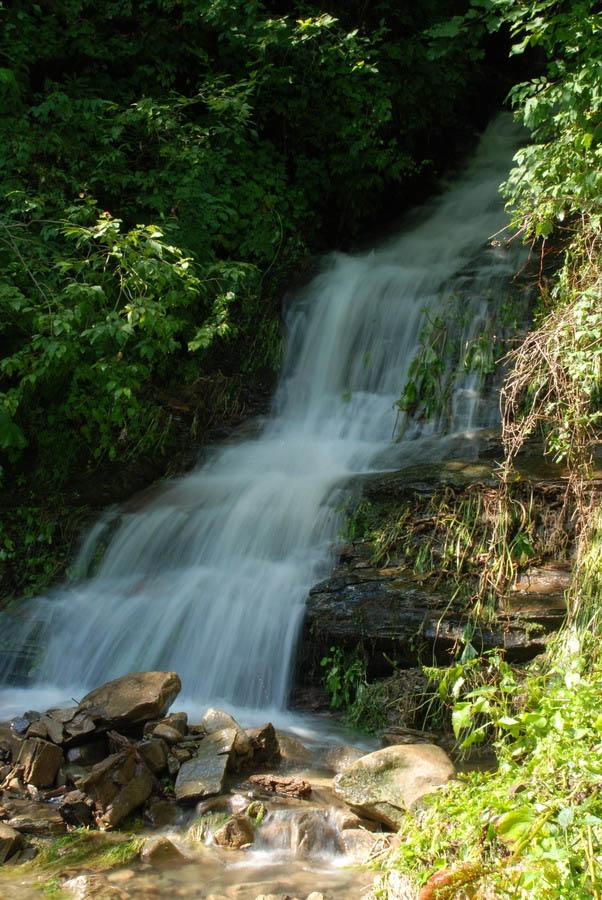 водопад в Карпатском Нацпарке