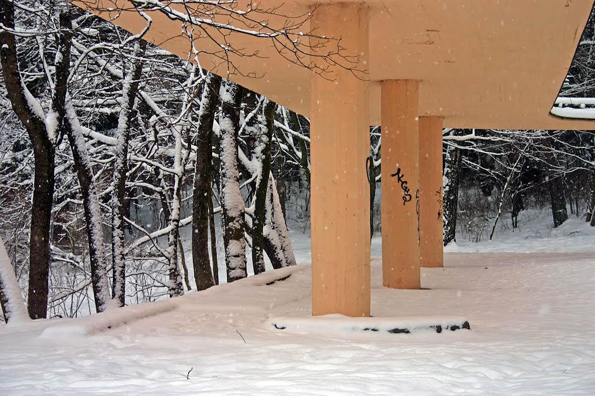 зима в парке Вингис