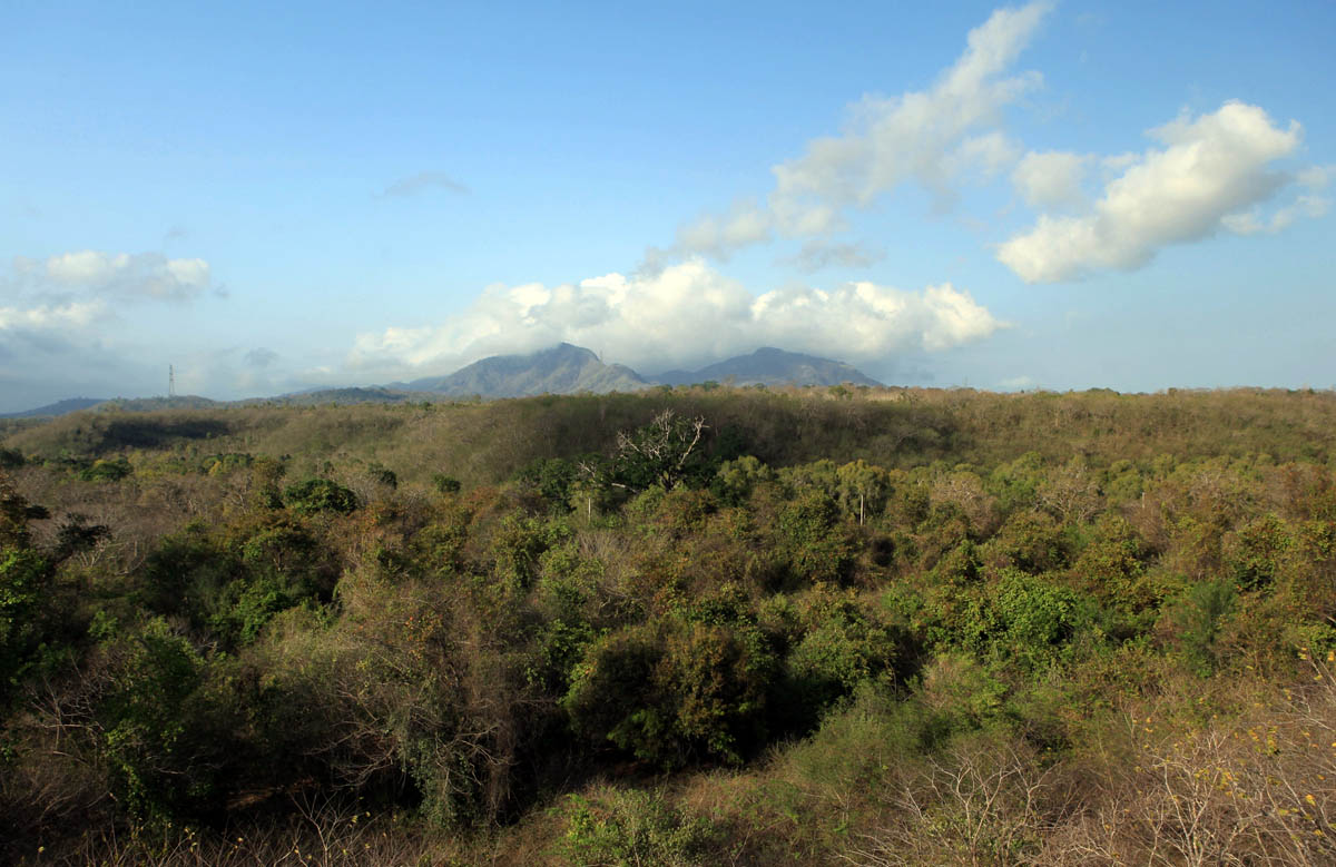 Bali Barat NP