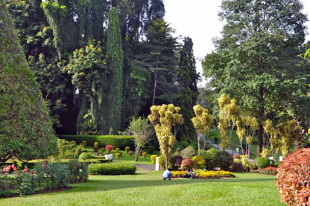 Королевский ботанический сад Перадении
