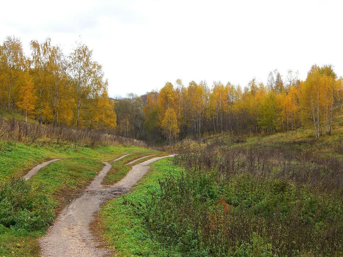 Москворецкий парк осенью