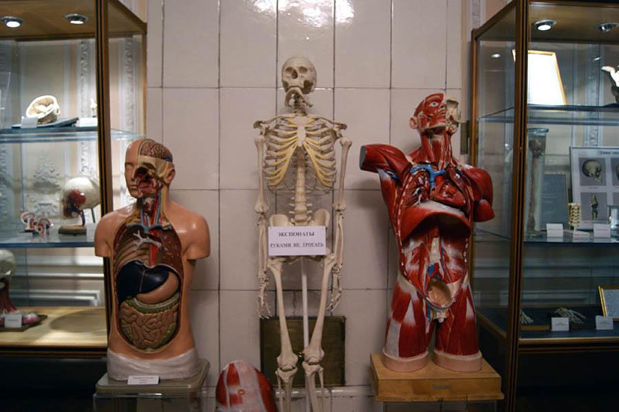 Музей гигиены, Санкт-Петербург, Россия