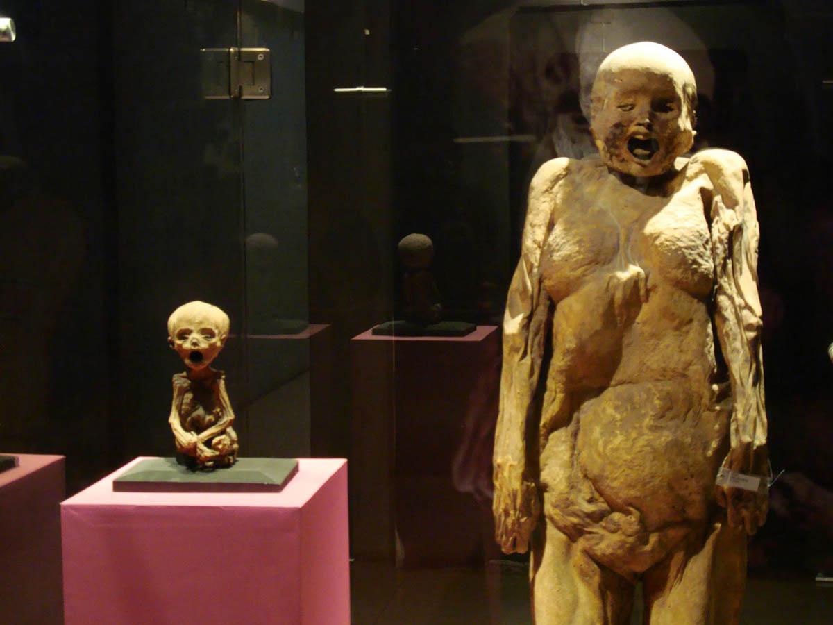 Музей мумий в Гуанахуато, слева - самая маленькая мумия в мире