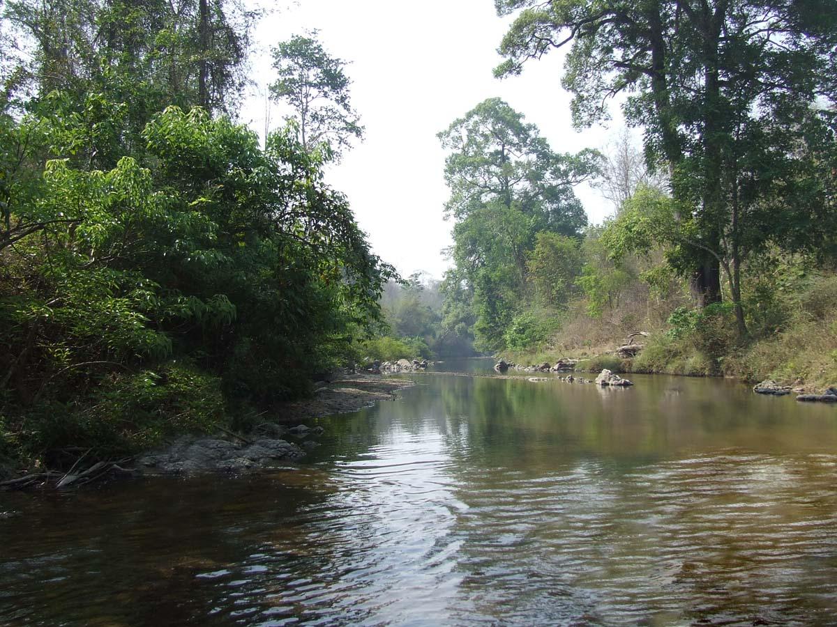 Национальный парк Кхауяй в Тайланде