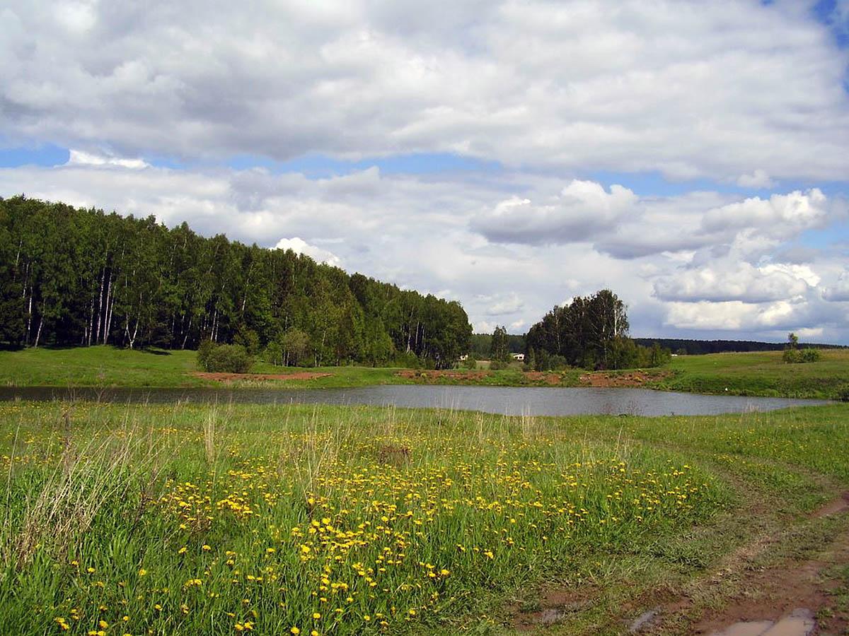 Петровский пруд, Санкт-Петербург, Россия