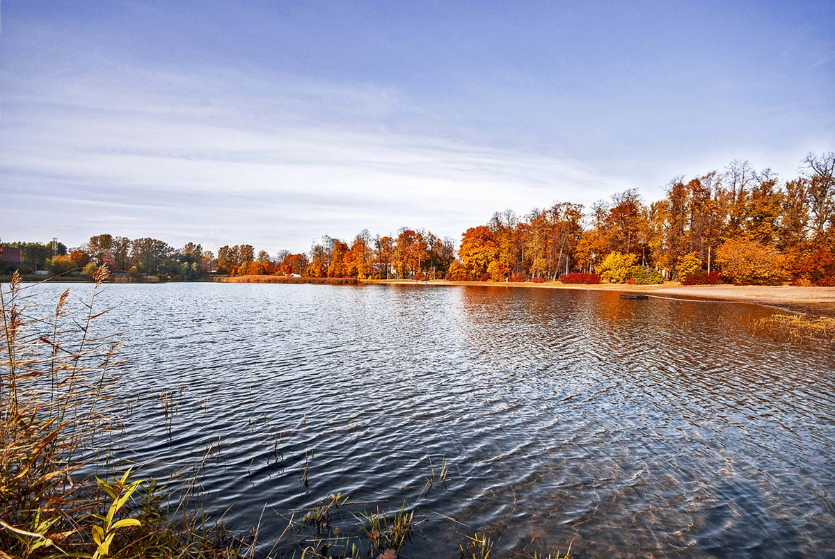 Петровский пруд осенью