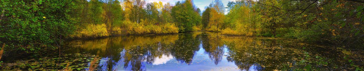 Петровский пруд (панорама)