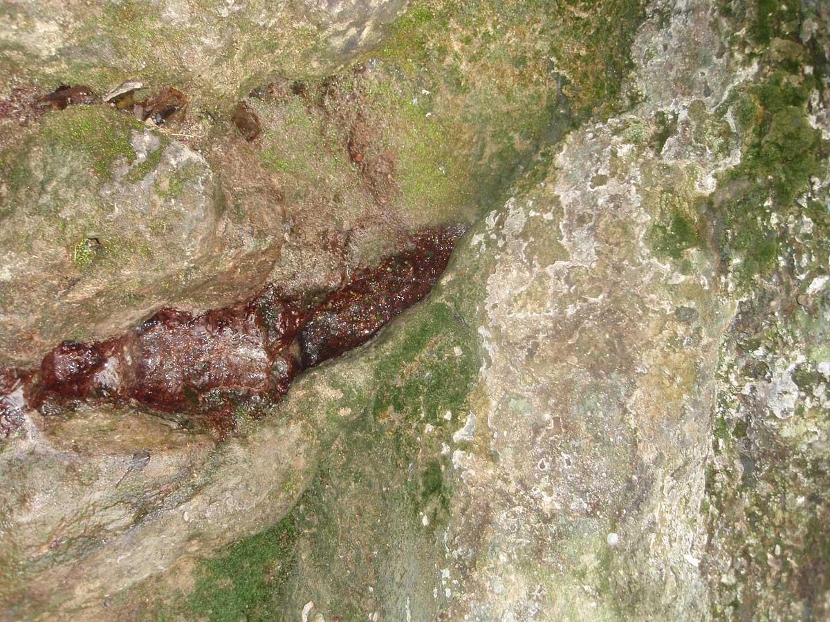 Плачущая скала, Крым