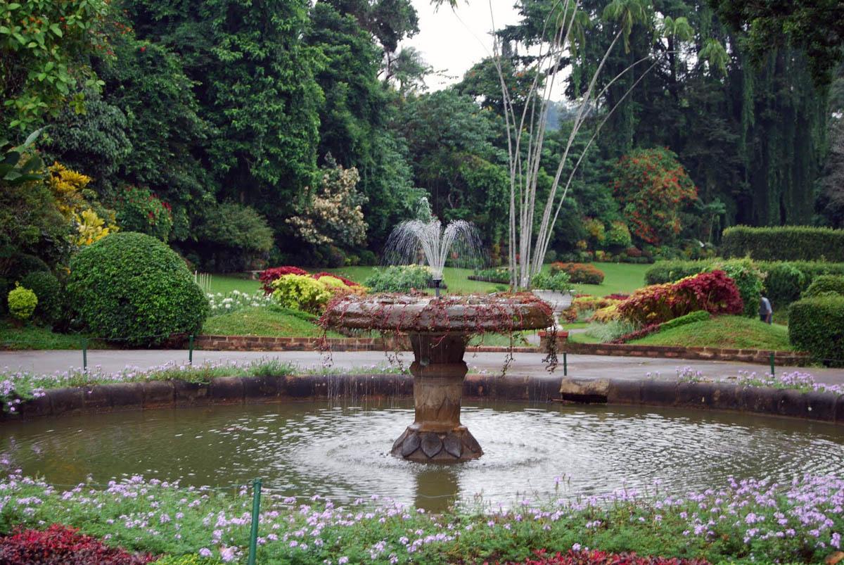 ботанический сад Перадении, Шри-Ланка