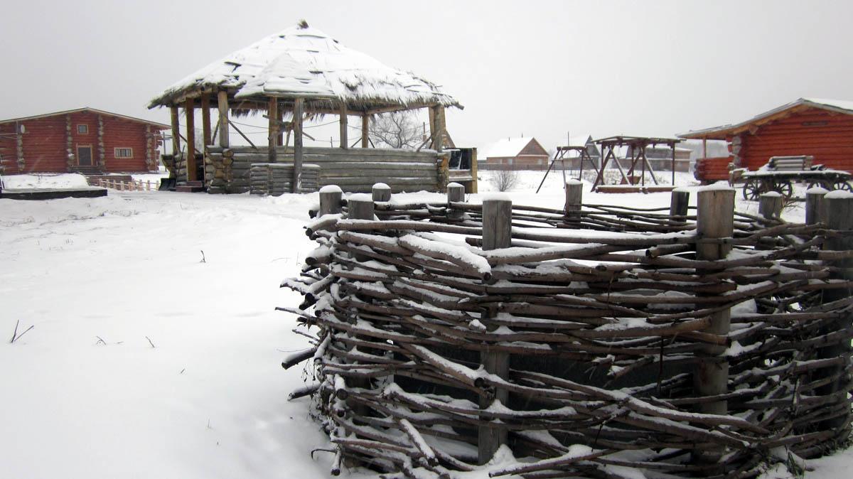 деревня Турнаево зимой