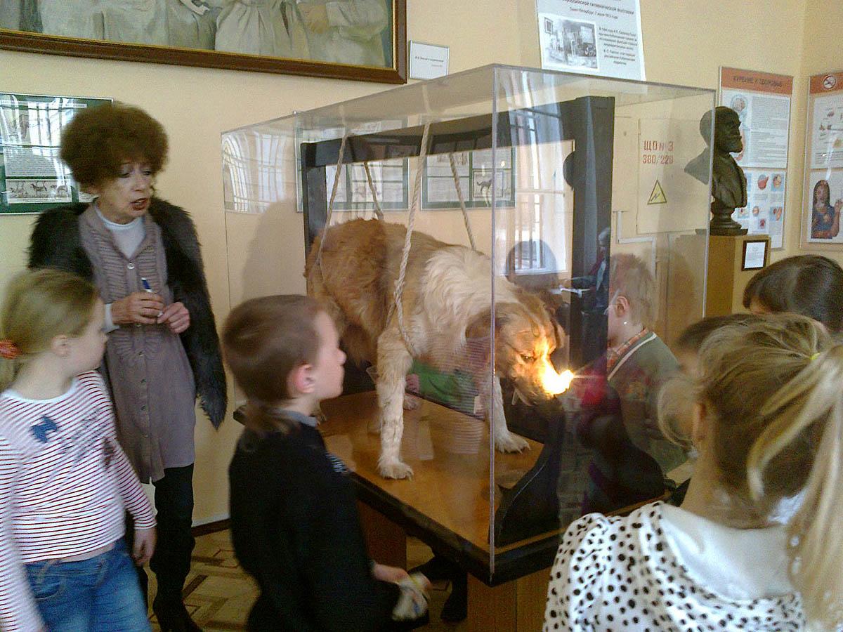 экспонаты Музея гигиены в Санкт-Петербурге