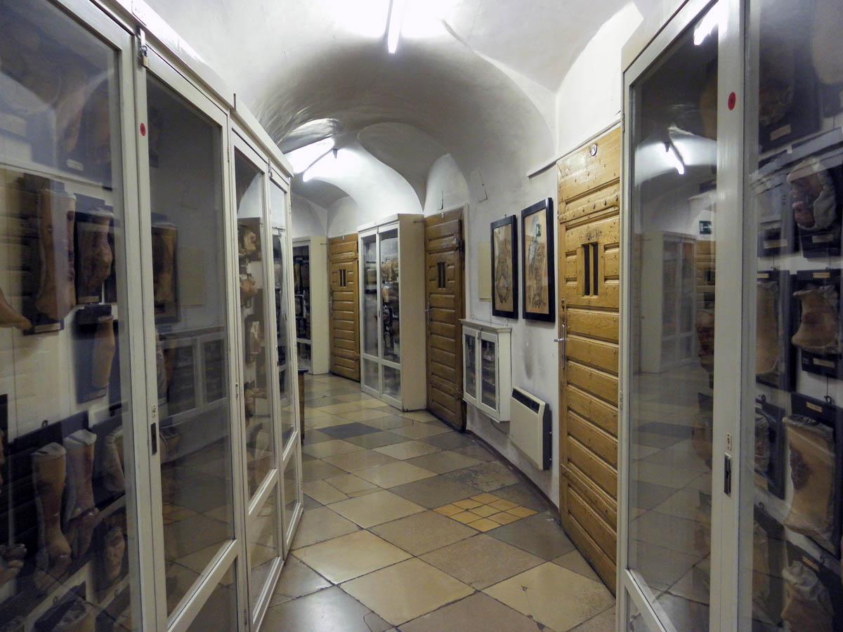 интерьер музея патологоанатомии
