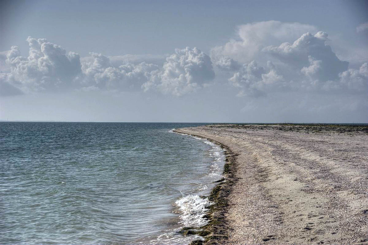 остров Бирючий