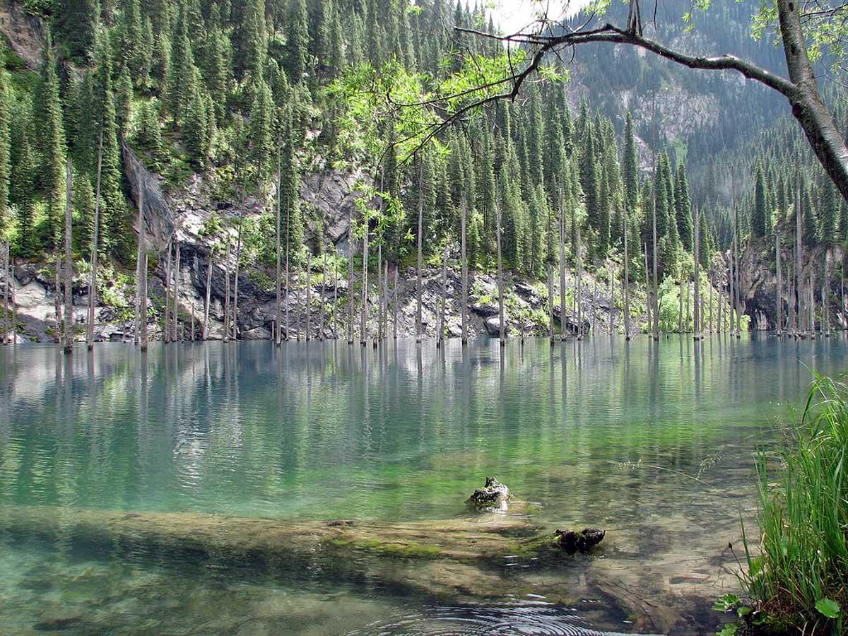 озеро Кайнды в Казахстане