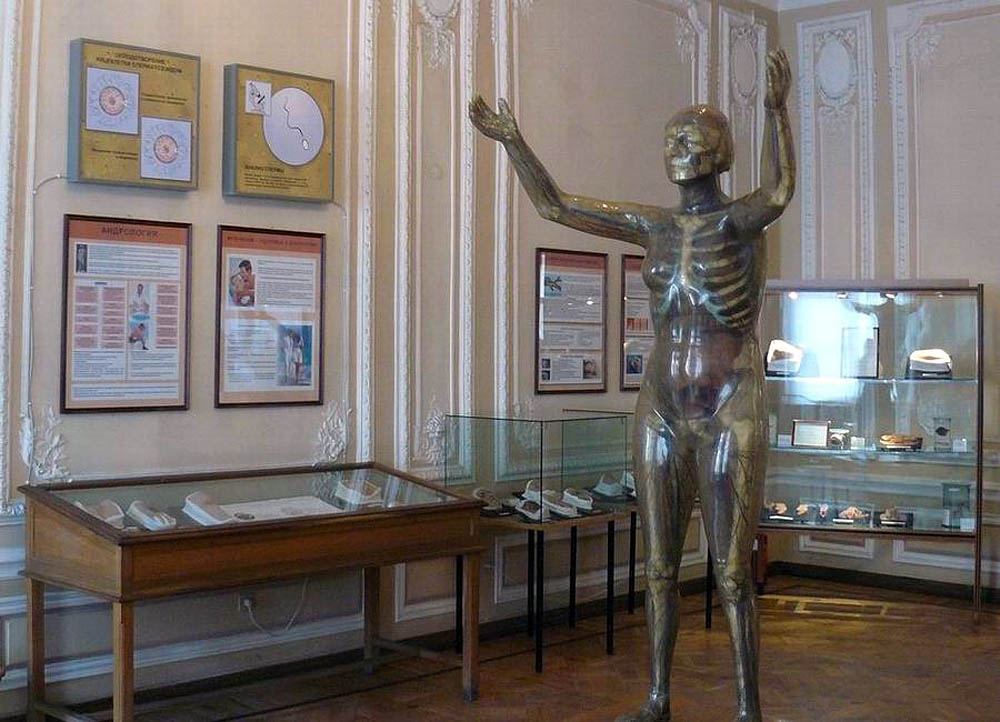 стеклянный человек в Музее гигиены СПб
