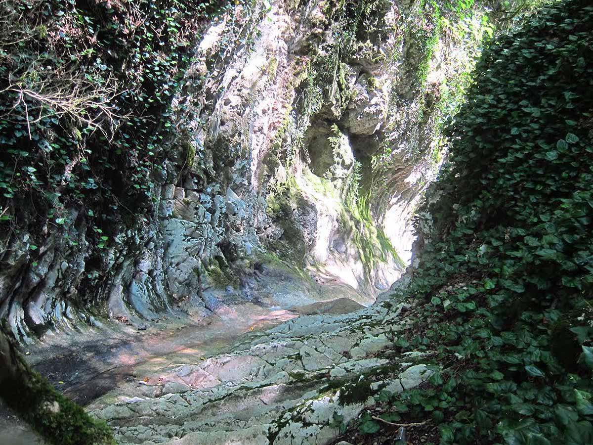 ущелье реки Чудо-Красотка, Лазаревское, Сочи